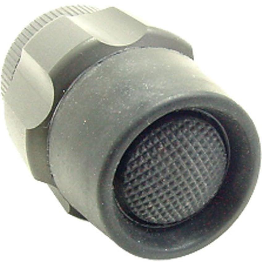 意外呼ぶ簡単なSUREFIRE シュアファイアー SW02 リアキャップ プッシュボタン スイッチ グレー [並行輸入品]