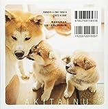 秋田犬のおやこ 画像