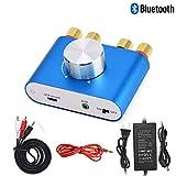 ELECPRO Bluetooth5.0 アンプ 100W パワーアンプ オーディオアンプ ステレオ スピーカー HI-FI音質 DC9V-24V電源入力 コンパクト 多機種対応 電源アダプタ付き