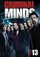Criminal Minds: Season 13 [DVD]