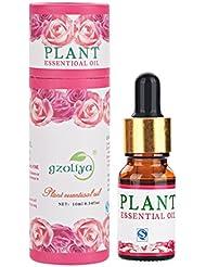 ローズプラントエッセンシャルオイル、10ml天然香り高いドロッパーアロマオイルは疲労を和らげます