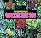 観葉植物 (山渓カラー名鑑) 画像