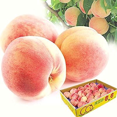 国華園 大特価 山形の桃・白桃 約5kg 冷蔵 ご家庭用