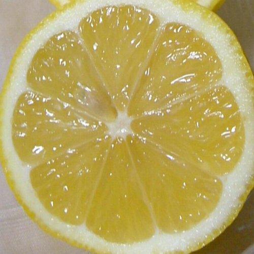 国産 檸檬 れもん  黄色レモン 大玉 2L〜3Lサイズ 5kg