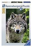 500ピース ジグソーパズル Wolfsportrait (36 x 49 cm)