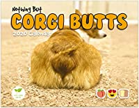 Corgi Butts 2020 ファニードッグカレンダー ホワイトエレファントとシークレットサンタへの完璧なギフト