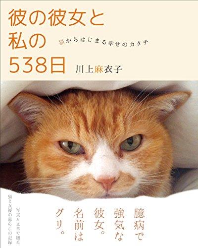 彼の彼女と私の538日 ~猫からはじまる幸せのカタチ~の詳細を見る