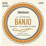 D'Addario ダダリオ バンジョー弦 NY Steel ニッケル Medium 5弦 .010-.023 EJ61NY 【国内正規品】