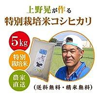 【30年産・白米】上野晃の特別栽培米コシヒカリ 5kg(5kg×1袋)