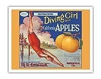 カリフォルニアのリンゴ - ニュータウンPippins - ダイビングガールズブランド - ビンテージなフルーツの木箱のラベル c.1920s - アートポスター - 28cm x 36cm