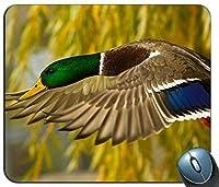 野生のアヒルの飛行クローズアップ写真マウスパッド、ゲーミング長方形マウスパッド