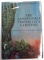 Sansevieria Trifasciata Varieties