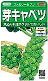 サカタのタネ 実咲野菜2300 芽キャベツ ファミリーセブン 00922300