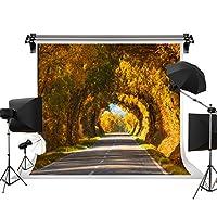 秋景色写真バックドロップFallフォトスタジオ小道具