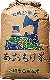 【28年産】玄米 30kg 青森 青天の霹靂(へきれき) (玄米のまま)