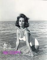 SP:大きな写真、エリザベス・テイラー、水着の海辺
