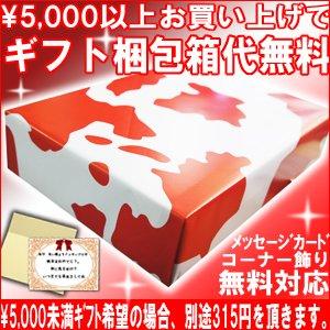 米焼酎 球磨焼酎 文蔵 箱なし720ml