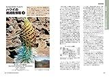 ハワイ魅惑の花図鑑―熱帯・亜熱帯の花1000種 画像