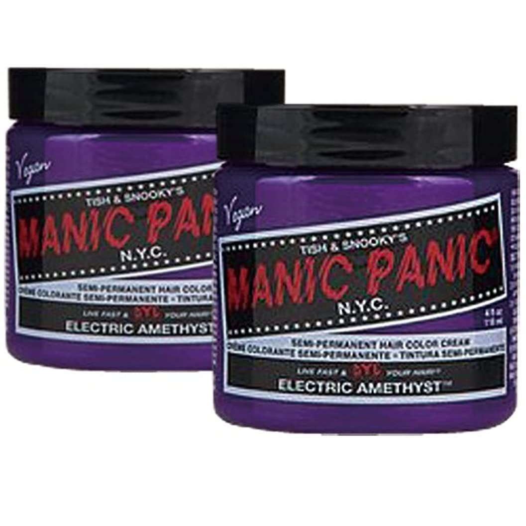 チキン偏心確立【2個セット】MANIC PANIC マニックパニック Electric amethyst エレクトリックアメジスト 118m