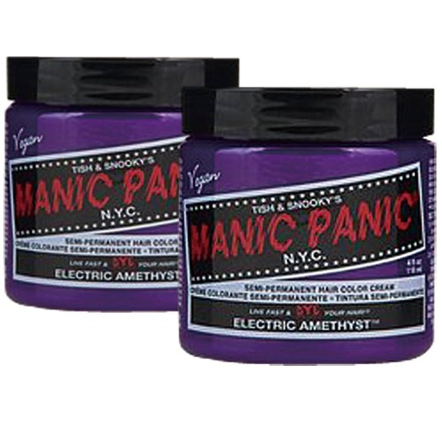 出撃者出発する政権【2個セット】MANIC PANIC マニックパニック Electric amethyst エレクトリックアメジスト 118m