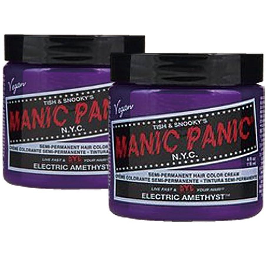 ダブル土地共和国【2個セット】MANIC PANIC マニックパニック Electric amethyst エレクトリックアメジスト 118m