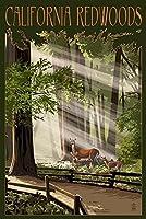 カリフォルニア–鹿とFawns Inレッドウッド 12 x 18 Art Print LANT-42608-12x18