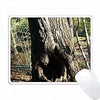 Alice Rabbit Holeは穴が空いた木の写真です。 PC Mouse Pad パソコン マウスパッド