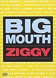 BIG MOUTH [DVD]