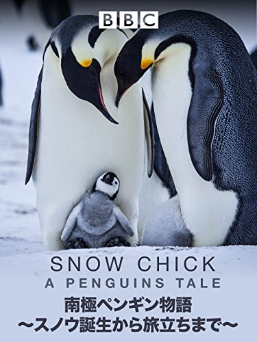 南極ペンギン物語 ?スノウ誕生から旅立ちまで? (吹替版)