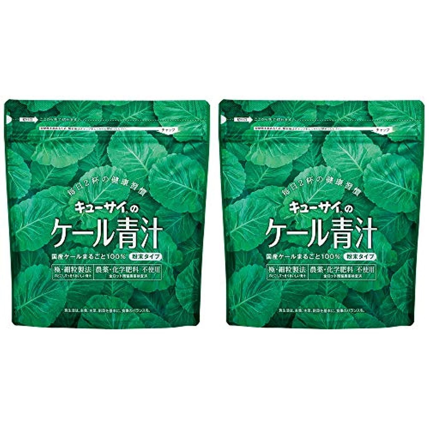 現象海峡注目すべきキューサイ青汁420g(粉末タイプ)2袋まとめ買い/キューサイ ケール青汁【1袋420g(約1カ月分)】