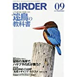 BIRDER(バーダー)2020年9月号 迷鳥の教科書