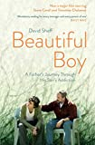 Beautiful Boy: A Father's Journey Through His Son's  Addiction (English Edition)