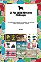 20 Pug Selfie Milestone Challenges: Pug Milestones for Memorable Moments, Socialization, Indoor & Outdoor Fun, Training Book 1