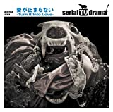 愛が止まらない -Turn It Into Love-♪serial TV dramaのCDジャケット