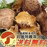 九州産原木乾し徳用椎茸500g 無農薬原木栽培100%