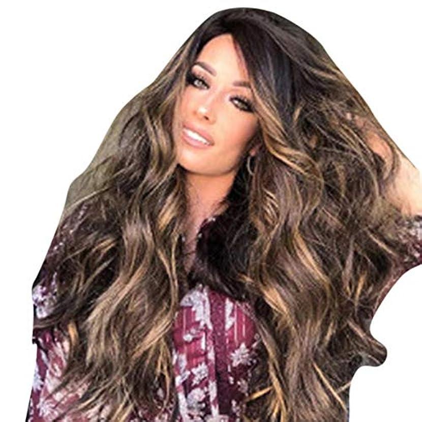 首尾一貫した老朽化したあなたのものWASAIO 女性金髪フルウィッグレディース変態カーリーウィッグ65-70cm (色 : ブラウン)