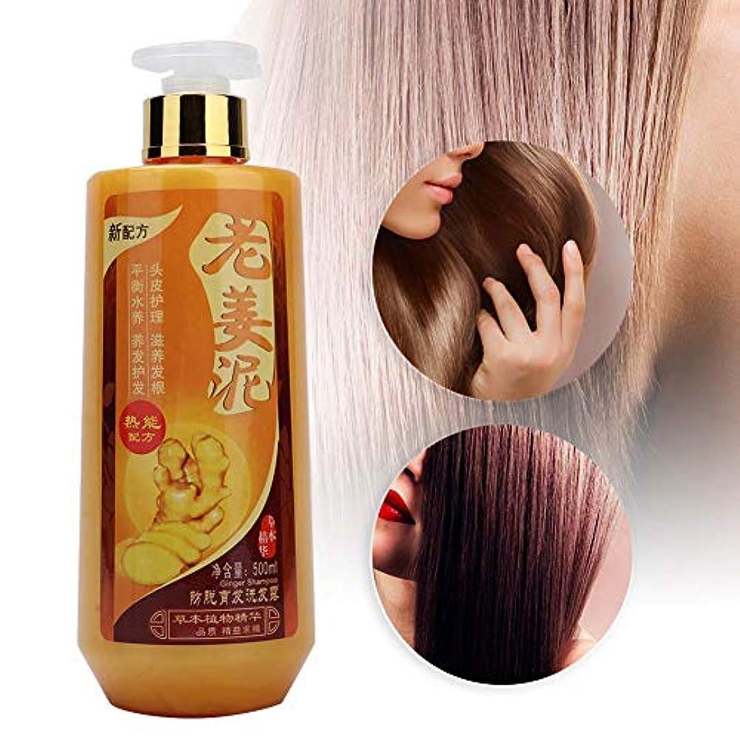 同様に微視的アクセルジンジャーシャンプー、ジンジャー本物のプロのヘアシャンプー、髪がより緻密になり、より太く、きれいに、潤いを与え、落ち着かせ、柔らかくする-すべての髪のタイプ、男性と女性用500ml