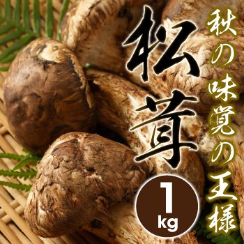 松茸 まつたけ 約1kg入り(中国産)