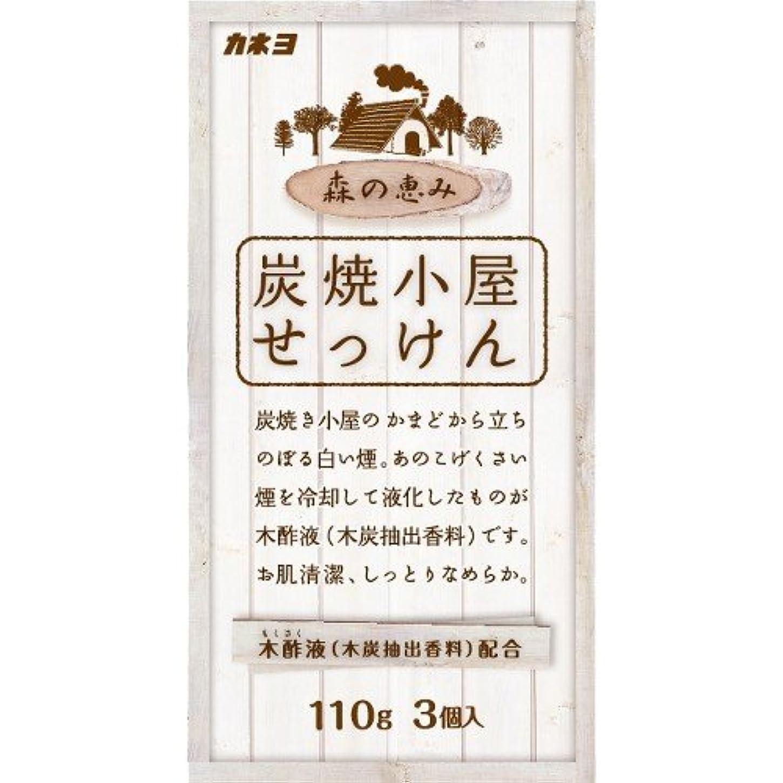 気体のモノグラフ滑り台カネヨ石鹸 炭焼小屋 化粧石けん 110g×3個入