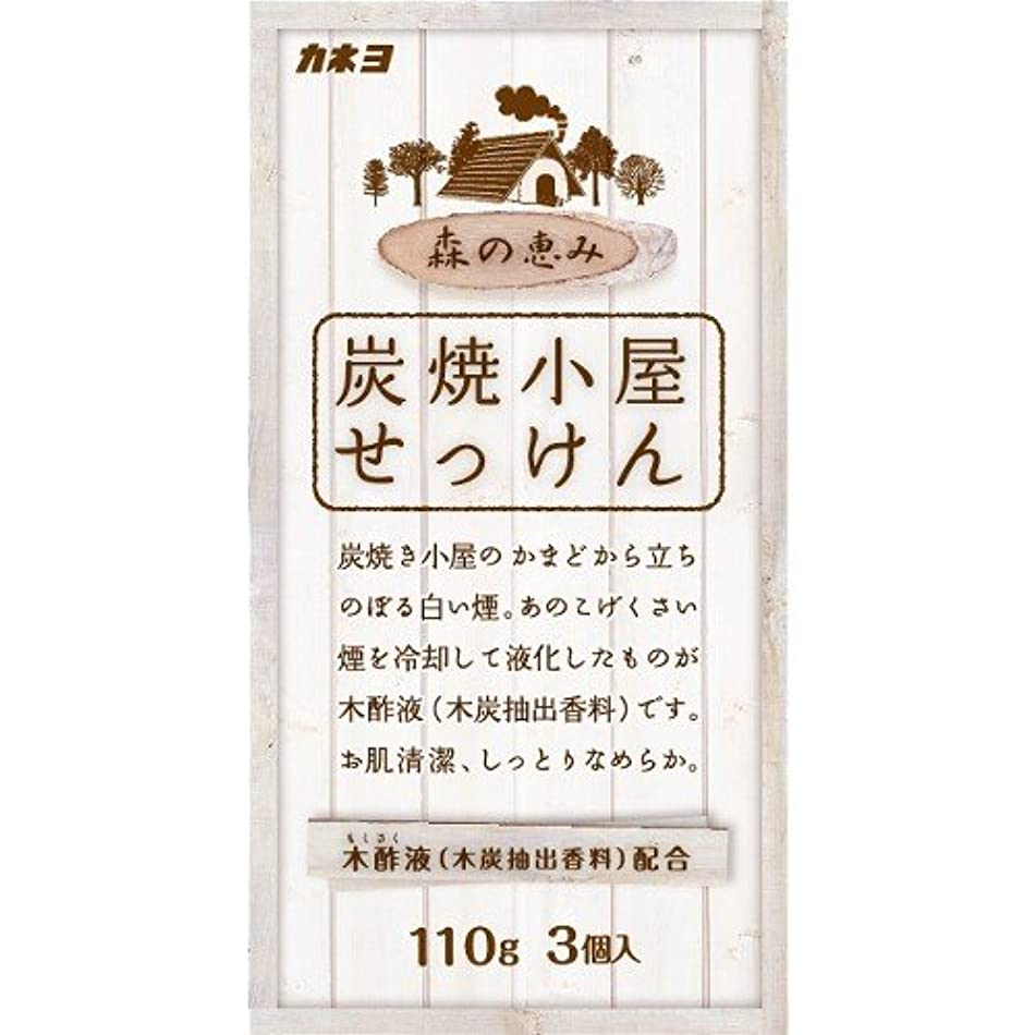 寛解監査生き物カネヨ石鹸 炭焼小屋 化粧石けん 110g×3個入