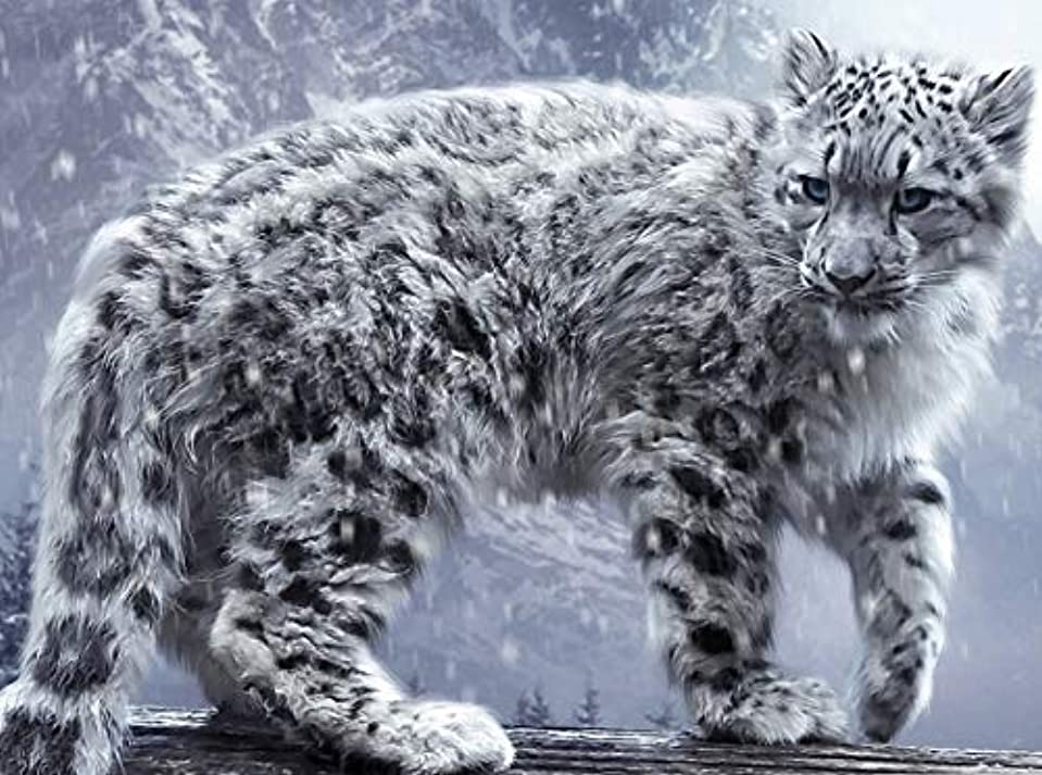五月以来軽蔑するPaint by Numbers Kits with 40x50cm snow leopard DIY Acrylic Painting for Kids Adults Beginner Students home Living room Decorate with Brushes