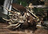 「キャッスルヴァニア ロードオブシャドウ (Castlevania Lords of Shadow)」の関連画像