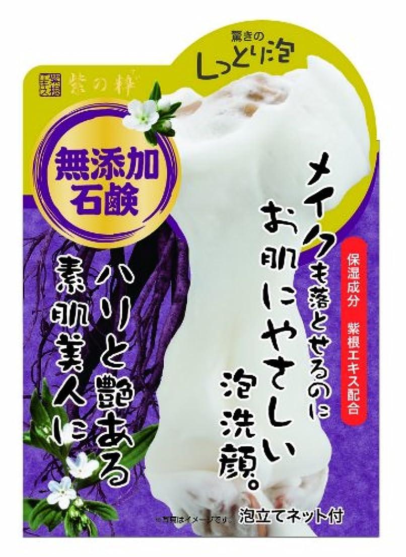 彫刻スナップライム紫の粋 メイクも落とせる洗顔石鹸N 100g