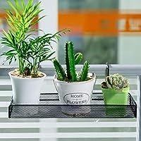 MXD オフィスの小さい花の立場の棚の鉄の強い防水および錆つくこと容易ではない (Color : Black)