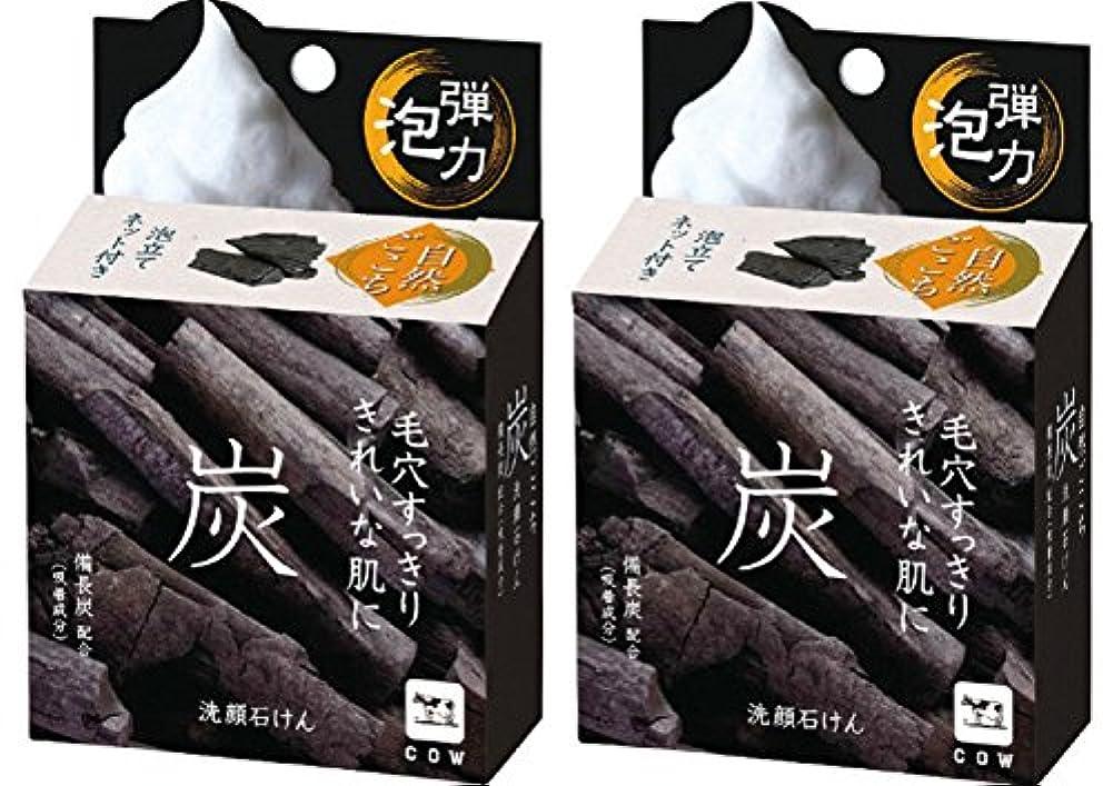 フィヨルド調整変形【まとめ買い】自然ごこち 炭 洗顔石けん 80g ×2セット