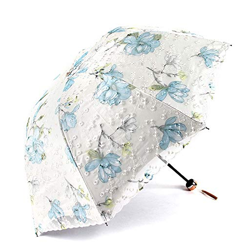 HYFJP 折りたたみ傘 レディース レース 多用途 刺繍 折りたたみ 晴傘 雨傘 姫様 可愛い 女優日傘 UVカット 日傘 傘 傘 (Color : 01, Size : One Size)