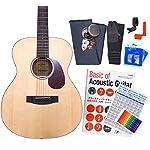 アリア アコースティックギター ARIA-101 アコギ 初心者 入門 12点セット N [98765] 【検品後発送で安心】