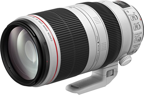 Canon 望遠ズームレンズ EF100-400mm F4.5-5.6L IS II USM フルサイズ対応 EF100-400LIS2