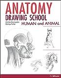 Anatomy Drawing School: Human and Animal 画像