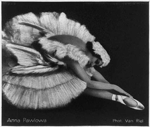 Photo :アンナ・パヴロワ、1881–1931年、ロシアバレリーナ、The Dying Swan 4